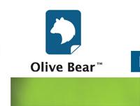 Olive Bear